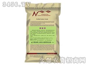 硝酸钾-北美农大
