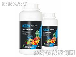 果树专用-含氨基酸水溶肥-小巨人