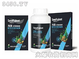 海藻生物刺激素-小巨人