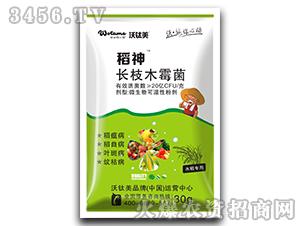 水稻专用长枝木霉菌-稻神-沃肽美
