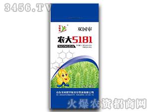 小麦种子-农大5181-宇航农业