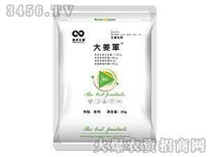 微生物肥(生姜专用)-大姜军-百邦润众