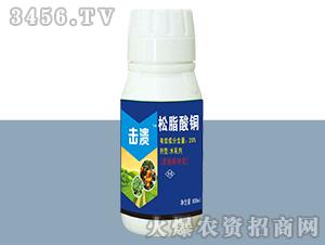20%松脂酸铜水乳剂-击溃-德邦农