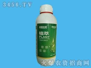 乙氧基化植物油-植萃-快施快美