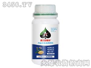 含氨基酸水溶肥料-黄芪膨根丰-利索