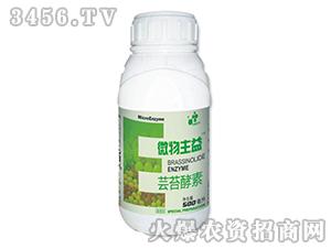 0.004%芸苔酵素水剂-微物主益-中植科华
