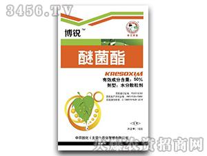 50%醚菌酯水分散粒剂-博锐-中农国化