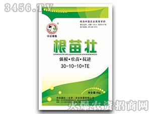 强根・壮苗・抗逆30-10-10+TE-根苗壮-中农国化