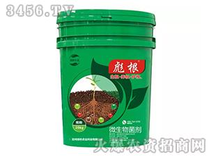 微生物菌剂-彪根-绿色农业