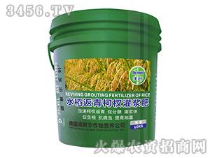 水稻返青柯杈灌浆肥-天叶-德默尔