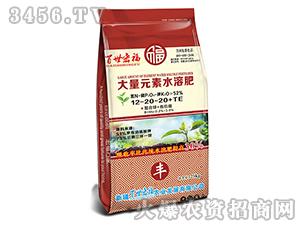 大量元素水溶肥12-20-20+TE-百世宏福