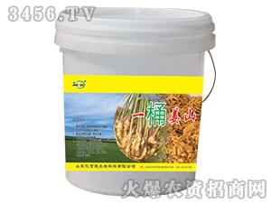 大姜专用微生物菌剂-一桶姜山-亿佰德