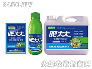 经济作物需配型氨基酸水溶肥-肥大大-茗益