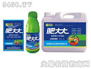 瓜果蔬菜需配型氨基酸水溶肥-肥大大-茗益