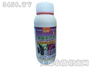 500ml大量元素浓缩肥-葡萄丰产宝-浩达