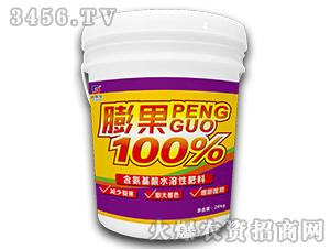 含氨基酸水溶肥料-膨果100%-迪斯曼