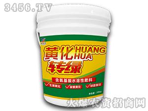 含氨基酸水溶肥料-黄化转绿-迪斯曼