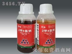 13%2甲4氯钠水剂-草吻-正午阳光