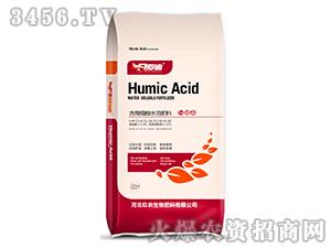 含腐植酸水溶肥料16-0-20-爱迪-尤朵拉