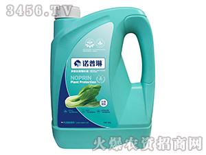 冲施肥(叶菜专用型)-诺普琳-科沃生物