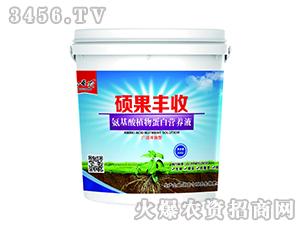 硅钙酵母蛋白营养液-硕果丰收-今互农
