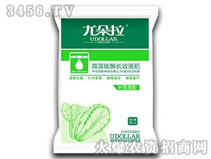 叶菜需配海藻碳酶长效液肥-尤朵拉