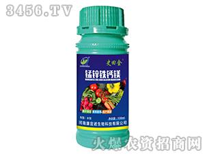 锰锌铁钙镁-史田金-康