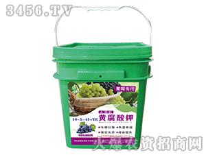 黄腐酸钾10-5-45+TE(葡萄专用)-奥绿丰-奥绿生物