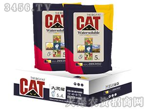 硅碳大量元素水溶肥料12-40-8+TE-大淝猫-云惠农