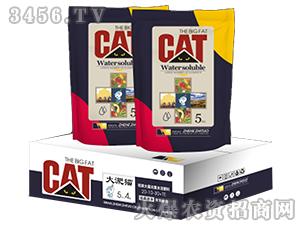 硅碳大量元素水溶肥料20-10-30+TE-大淝猫-云惠农