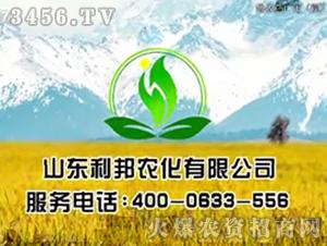 利邦农化招商海报
