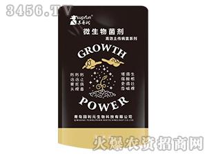 高效土传病害剂-苏普润-园利元