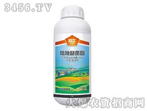 25%吡唑醚菌酯悬浮剂-柯牛-科利农