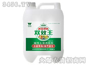 碱性土壤调理剂-解盐调碱双效王-沃尔优