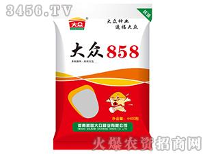 大众858-玉米种子-顺鑫大众