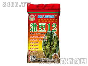淮豆12-大豆种子-晨