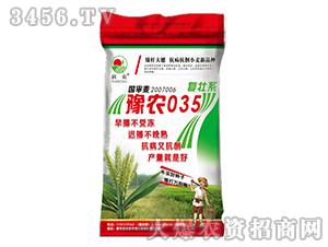 豫农035(复壮系)-小麦种子-晨禾种业