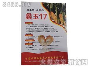 蠡玉17-玉米种子丰旺西海