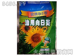 陇葵杂3号-向日葵种子-农垦良种