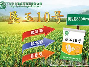 垦玉10-玉米种子-农垦良种