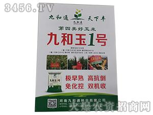 九和玉1号-玉米种子-沃丰农业