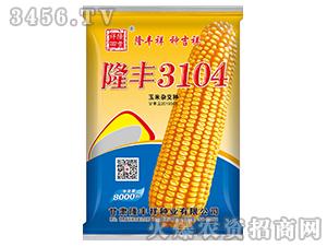 隆丰3104-玉米种子-隆丰祥
