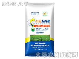 小麦返青肥-春潮红-春潮生物