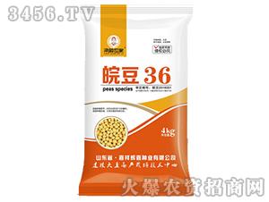 皖豆36-大豆种子-粱种世家
