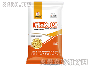 皖豆21020-大豆种子-粱种世家