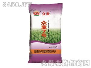 众麦7号-小麦种子-顺鑫大众