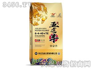 大量元素水溶肥料6-4-40+TE-五道丰