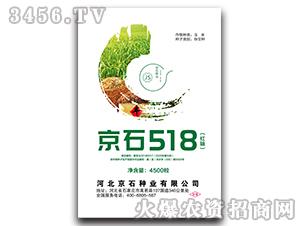 京石518-玉米杂交种-京石种业