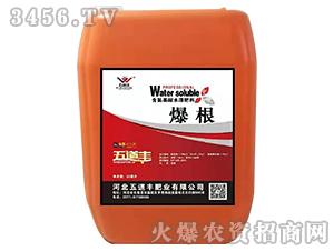 含氨基酸水溶肥料(桶)-爆根-五道丰