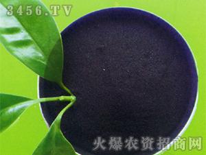 粉状腐植酸原矿-润土生